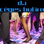 DJ céges bulira